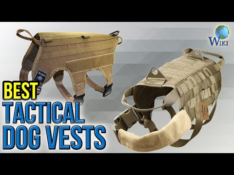 8 Best Tactical Dog Vests 2017