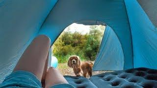 Отдых в палатке . Лагерь в лесу