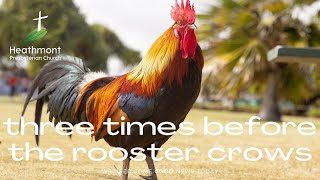 Three times before the rooster crows. Mark 14:66-72