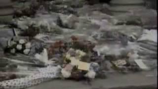 Freddie Mercury - Funeral Blues