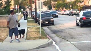 Смотреть онлайн Полицейский застрелил пса