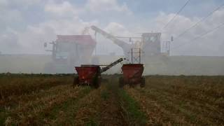NTR South 2014 South Texas Harvest vid clips