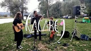 Video Na polích (z koncertu)