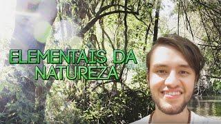 ELEMENTAIS/SERES DA NATUREZA - CRISTIAN DAMBRÓS