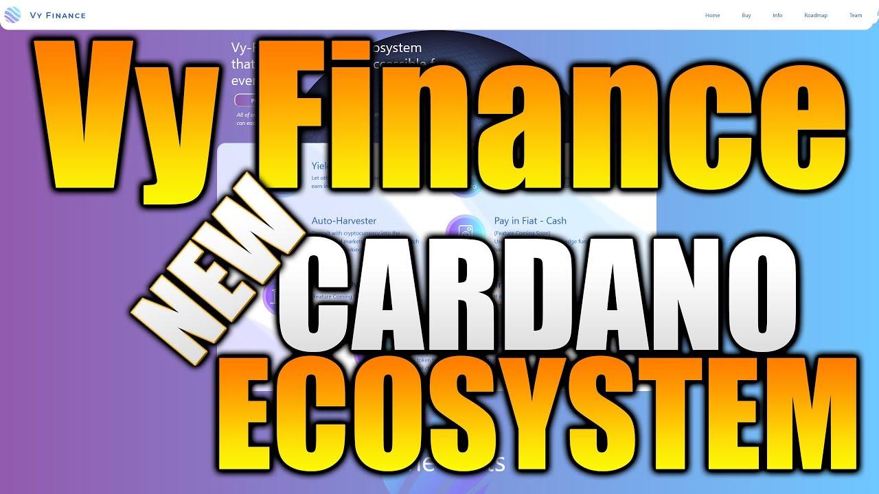 Vy Financing – 3 DAYS! NEW Cardano Environment Job! SUBSTANTIAL Prospective in Cardano VyFi Job!
