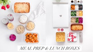 ALICE ESMERALDA LUNCH BOX ET MEAL PREP VEGAN