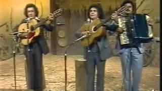 Trio Parada Dura - Homem De Pedra (Programa Viola, Minha Viola - 1980)