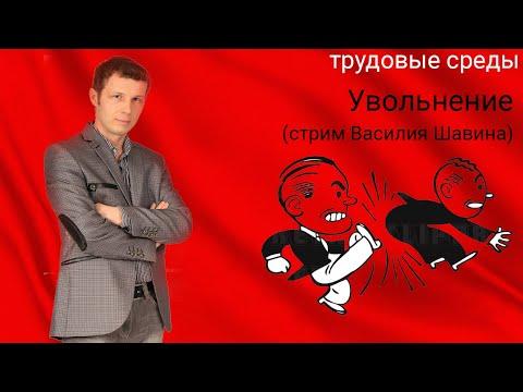 Увольнение (стрим Василия Шавина)