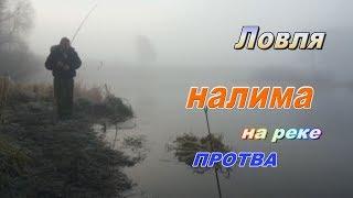 Рыбалка в ноябре на протве