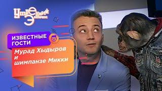 Шимпанзе 4 канал. Выпуск 13.09.2017