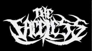 Technical Death Metal Compilation (Ultra HQ)