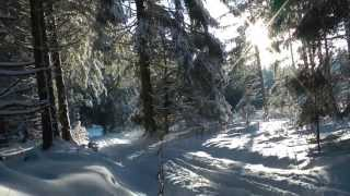 preview picture of video 'Eifelwinter 2012 (Langlauf in Hollerath)'