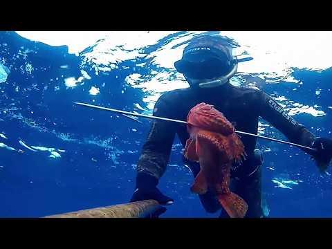 Pesca russa di me rr3