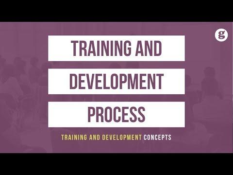 Training and Development Process - YouTube