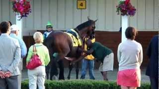 preview picture of video 'Lentenor at Colonial Downs. June 16, 2012'