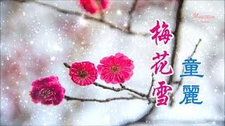 童麗《梅花雪》梅花飄雪情深厚 ... ♥ ♪♫*•