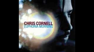 Chris Cornell - Steel Rain