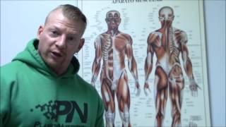 LE SHOW DU PRO - Leçon d'anatomie