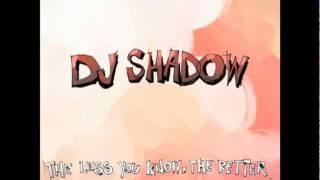 Dj Shadow - Circular logic