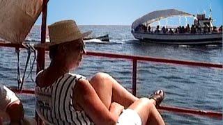 preview picture of video 'Tunesien - Djerba - Bootsausflug Houmt Souk'