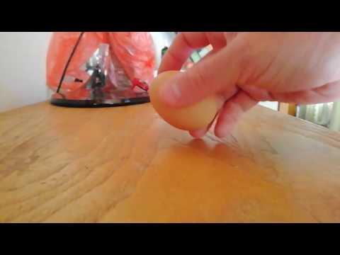 Pinworm fésű