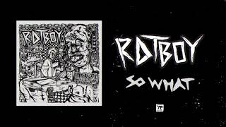 "RAT BOY   ""SO WHAT"" (Full Album Stream)"