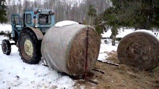 Tractor T-40AM Transporting Hay Roll (~320kg) (1080p)
