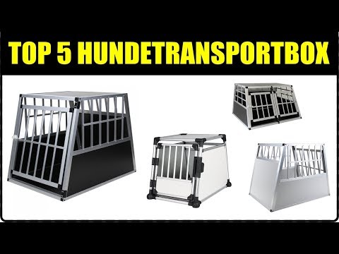 TOP 5 AUTO HUNDETRANSPORTBOXEN ★ Hundetransport im Auto ★ TOP Hundebox ★ Auto Hundetransportbox Test