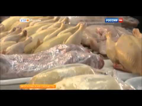 Морской рис гепатит