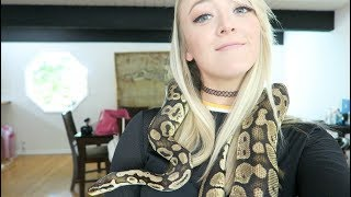 IM BRITNEY SPEARS CUDDLING WITH SNAKES