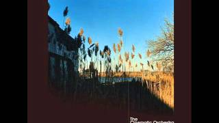 The Cinematic Orchestra _ That Home