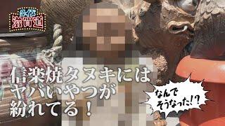 信楽焼タヌキにはヤバいやつが紛れてる!:クイズ滋賀道