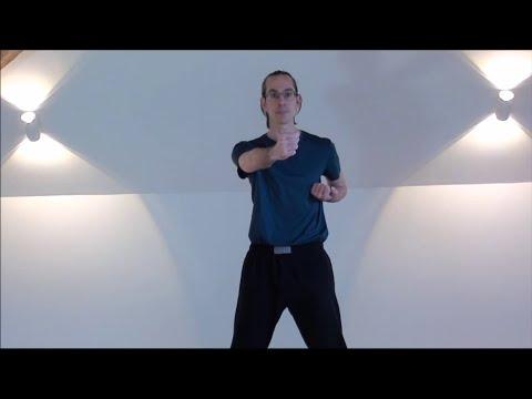 Wing Chun online lernen - In 3 Schritten zum traditionellen Wing Chun Schlag 1
