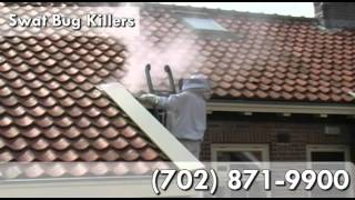 Pest Control Service, Roaches in North Las Vegas NV 89032