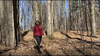 Ontario Envirothon Virtual Lab: Sustainable Forest Management