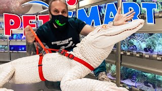 TAKING MY ALBINO ALLIGATOR TO PETSMART TO PICK OUT AN OUTFIT!! | BRIAN BARCZYK