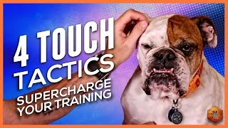 How to Pet Your Dog for Max Reinforcement! 4 Touch Tactics to Supercharge Training