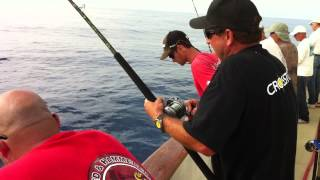 Top Gun 80 1.5 Day Bluefin Part 1