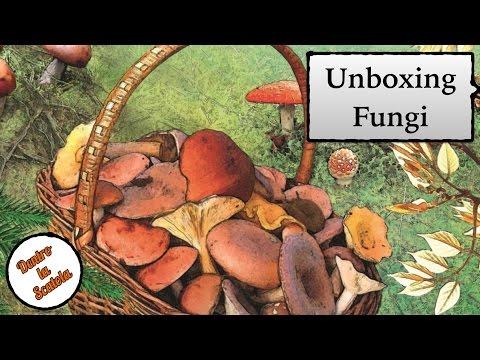Che rapidamente per togliere un fungo di unghie
