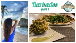 The Healthy Voyager Barbados Part 1