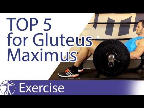 Zestaw ćwiczeń porannych dla wszystkich grup mięśniowych
