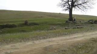 Huseyn Saracli - Etrafli dubeyti