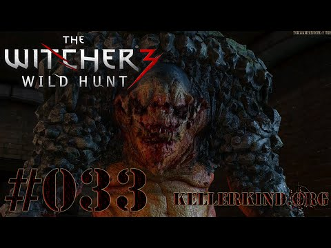 The Witcher 3 [HD|60FPS] #033 Inspektor Geralt ermittelt wieder ★ Let's Play The Witcher 3