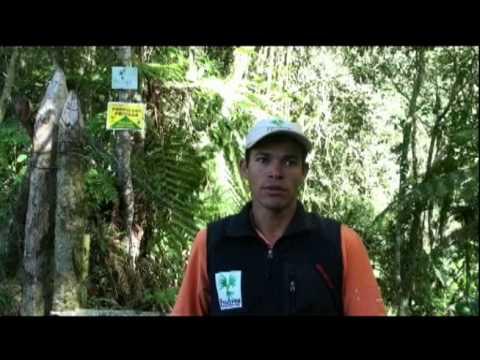 Compartir este video de Proaves Colombia