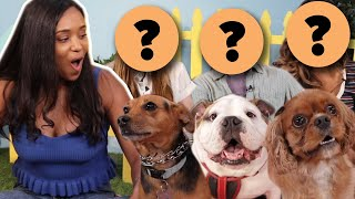 Single Woman Picks A Date Based On Their Dog