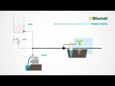 Blumat Wasser Anbindung mit Tank