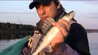 О чем передача моя рыбалка