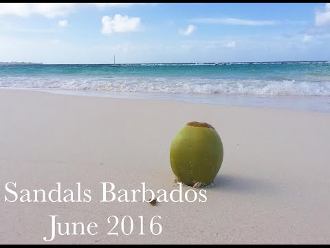 Sandals Barbados June 2016 - ft Tropics by My Morning Jacket