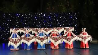 группа народных танцев школы «МАРТЭ» под руководством Любови Марчуковой.Vienna Dance Open