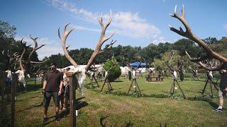 Országos vadásznap 2020 - Zalamegye